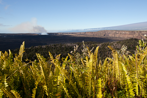 View of Kilauea from Volcano House