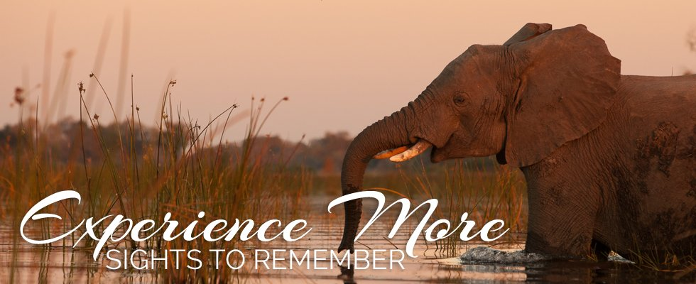 Experience More - Sights To Enrich Your Next Trip